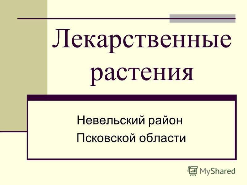 Лекарственные растения Невельский район Псковской области