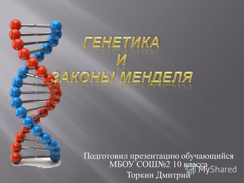 Подготовил презентацию обучающийся МБОУ СОШ 2 10 класса Торкин Дмитрий