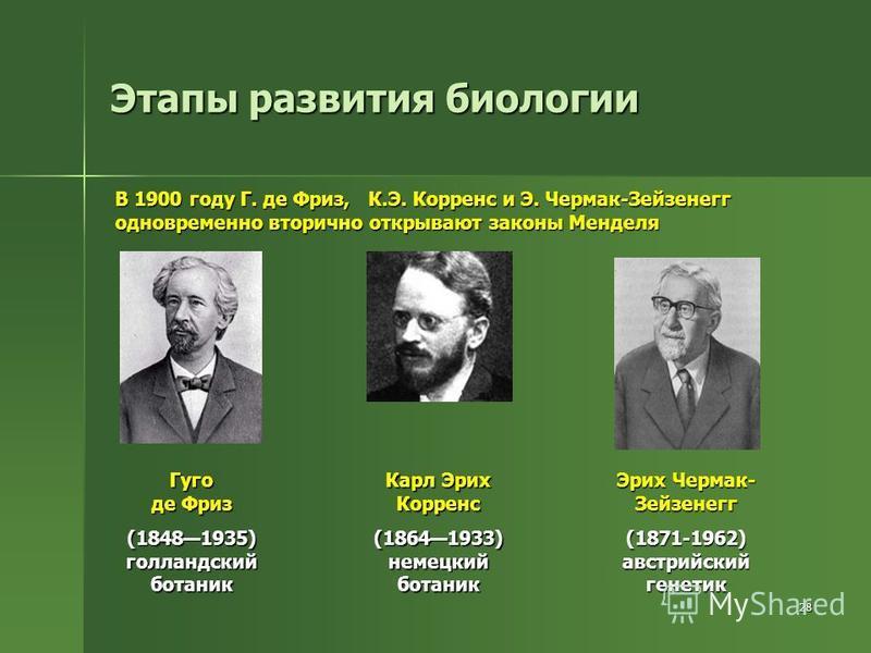 28 Этапы развития биологии В 1900 году Г. де Фриз, К.Э. Корренс и Э. Чермак-Зейзенегг одновременно вторично открывают законы Менделя Гуго де Фриз (18481935) голландский ботаник Карл Эрих Корренс (18641933) немецкий ботаник Эрих Чермак- Зейзенегг (187