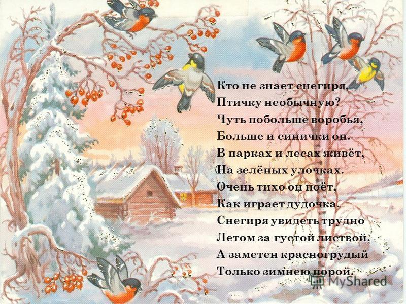 Кто не знает снегиря, Птичку необычную? Чуть побольше воробья, Больше и синички он. В парках и лесах живёт, На зелёных улочках. Очень тихо он поёт, Как играет дудочка. Снегиря увидеть трудно Летом за густой листвой. А заметен красногрудый Только зимн