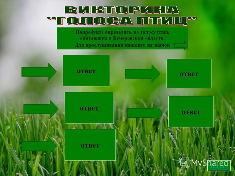 Попробуйте определить по голосу птиц, обитающих в Кемеровской области. Для прослушивания нажмите на значок грач лебедь синица сова воробей ответ Назад