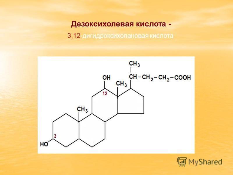 3,12-дигидроксихолановая кислота Дезоксихолевая кислота -