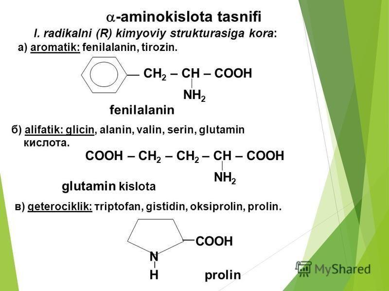 -aminokislota tasnifi І. radikalni (R) kimyoviy strukturasiga kora: CH 2 – CH – COOH NH 2 fenilalanin б) alifatik: glicin, alanin, valin, serin, glutamin кислота. а) aromatik: fenilalanin, tirozin. в) geterociklik: тriptofan, gistidin, oksiprolin, pr