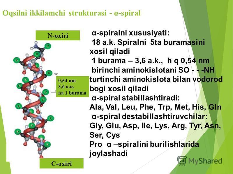 Oqsilni ikkilamchi strukturasi - α-spiral N-oxiri C-oxiri 0,54 nm 3,6 а.к. na 1 burama α-spiralni xususiyati: 18 a.k. Spiralni 5ta buramasini xosil qiladi 1 burama – 3,6 a.k., h q 0,54 nm birinchi aminokislotani SO - - -NH turtinchi aminokislota bila