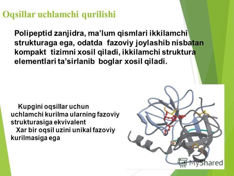 Oqsillar uchlamchi qurilishi Polipeptid zanjidra, malum qismlari ikkilamchi strukturaga ega, odatda fazoviy joylashib nisbatan kompakt tizimni xosil qiladi, ikkilamchi struktura elementlari tasirlanib boglar xosil qiladi. Kupgini oqsillar uchun uchla