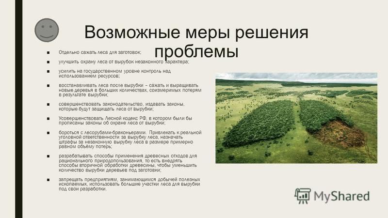 Возможные меры решения проблемы Отдельно сажать леса для заготовок; улучшить охрану леса от вырубок незаконного характера; усилить на государственном уровне контроль над использованием ресурсов; восстанавливать леса после вырубки – сажать и выращиват