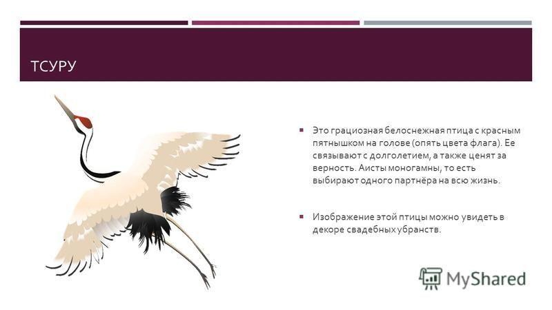 ТСУРУ Это грациозная белоснежная птица с красным пятнышком на голове ( опять цвета флага ). Ее связывают с долголетием, а также ценят за верность. Аисты моногамны, то есть выбирают одного партнёра на всю жизнь. Изображение этой птицы можно увидеть в
