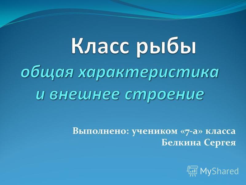 Выполнено: учеником «7-а» класса Белкина Сергея