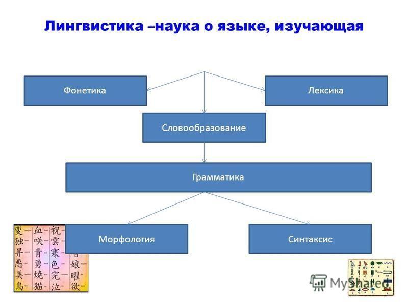 Лингвистика –наука о языке, изучающая Фонетика Словообразование Лексика Грамматика Морфология Синтаксис