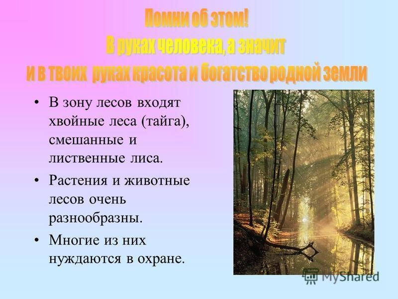 В зону лесов входят хвойные леса (тайга), смешанные и лиственные лиса. Растения и животные лесов очень разнообразны. Многие из них нуждаются в охране.
