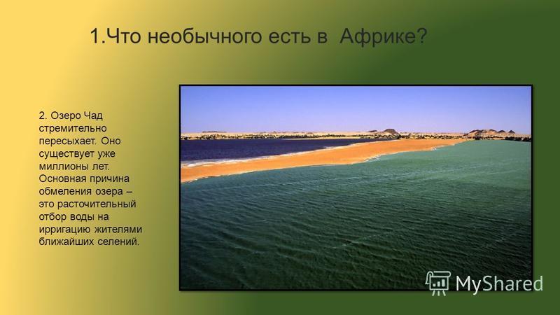2. Озеро Чад стремительно пересыхает. Оно существует уже миллионы лет. Основная причина обмеления озера – это расточительный отбор воды на ирригацию жителями ближайших селений.