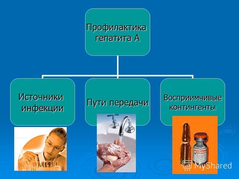 Профилактика гепатита А Источникиинфекции Пути передачи Восприимчивыеконтингенты