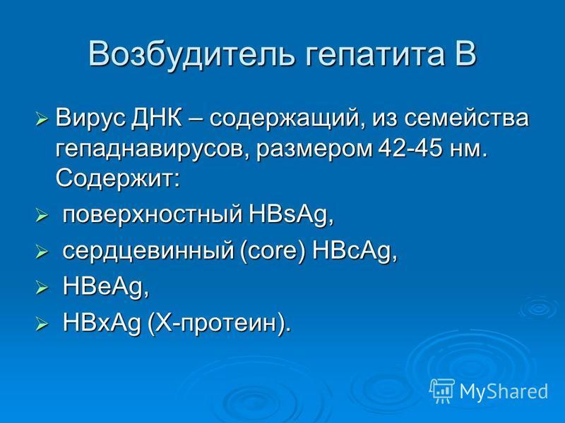 Возбудитель гепатита В Вирус ДНК – содержащий, из семейства гепаднавирусов, размером 42-45 нм. Содержит: Вирус ДНК – содержащий, из семейства гепаднавирусов, размером 42-45 нм. Содержит: поверхностный HBsAg, поверхностный HBsAg, сердцевинный (core) H