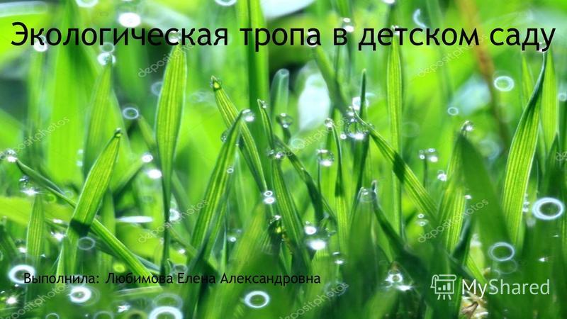 Экологическая тропа в детском саду Выполнила: Любимова Елена Александровна