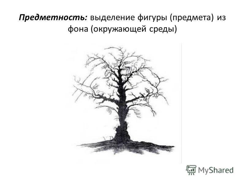 Предметность: выделение фигуры (предмета) из фона (окружающей среды)