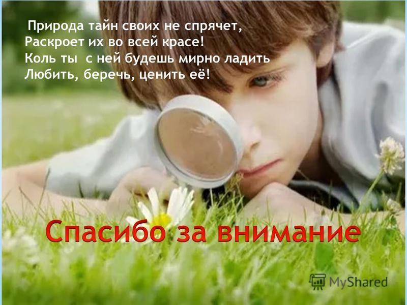 Природа тайн своих не спрячет, Раскроет их во всей красе! Коль ты с ней будешь мирно ладить Любить, беречь, ценить её!