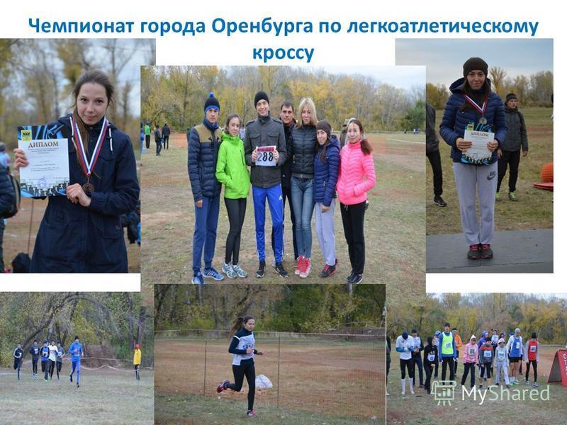 Чемпионат города Оренбурга по легкоатлетическому кроссу