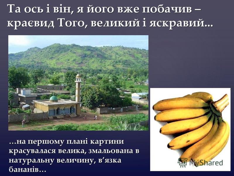 { Та ось і він, я його вже побачив – краєвид Того, великий і яскравий... …на першому плані картини красувалася велика, змальована в натуральну величину, вязка бананів…