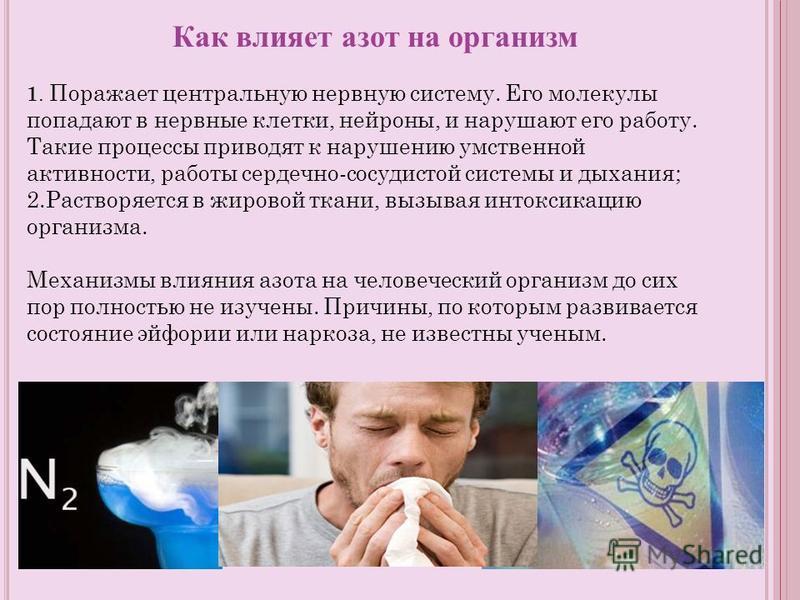 Как влияет азот на организм 1. Поражает центральную нервную систему. Его молекулы попадают в нервные клетки, нейроны, и нарушают его работу. Такие процессы приводят к нарушению умственной активности, работы сердечно-сосудистой системы и дыхания; 2. Р