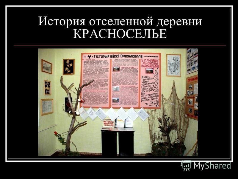 История отселенной деревни КРАСНОСЕЛЬЕ