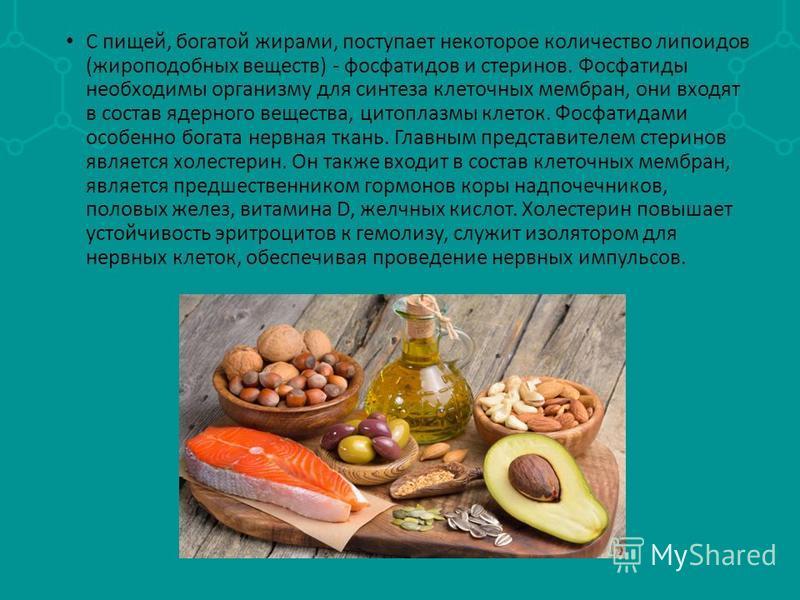 С пищей, богатой жирами, поступает некоторое количество липоидов (жироподобных веществ) - фосфатидов и стеринов. Фосфатиды необходимы организму для синтеза клеточных мембран, они входят в состав ядерного вещества, цитоплазмы клеток. Фосфатидами особе