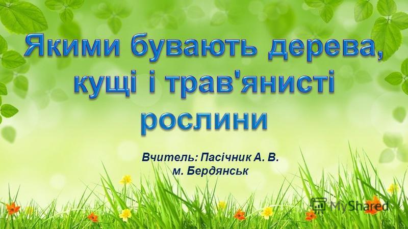 Вчитель: Пасічник А. В. м. Бердянськ