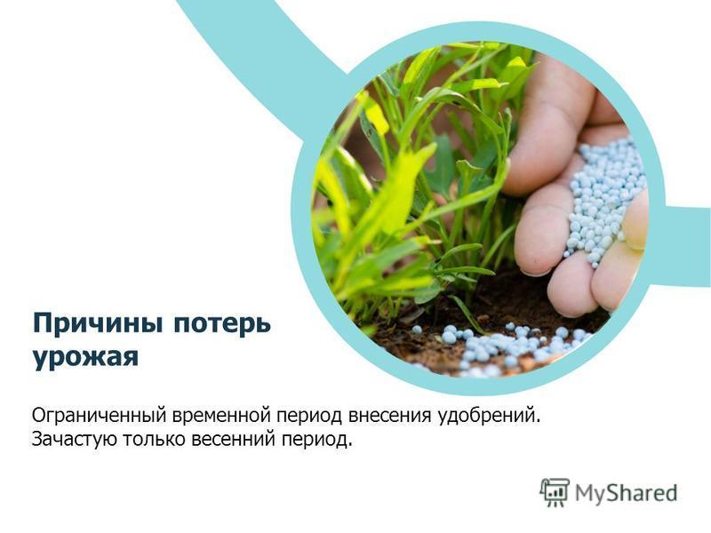 Ограниченный временной период внесения удобрений. Зачастую только весенний период. Причины потерь урожая