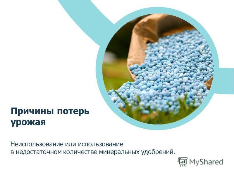 Неиспользование или использование в недостаточном количестве минеральных удобрений. Причины потерь урожая