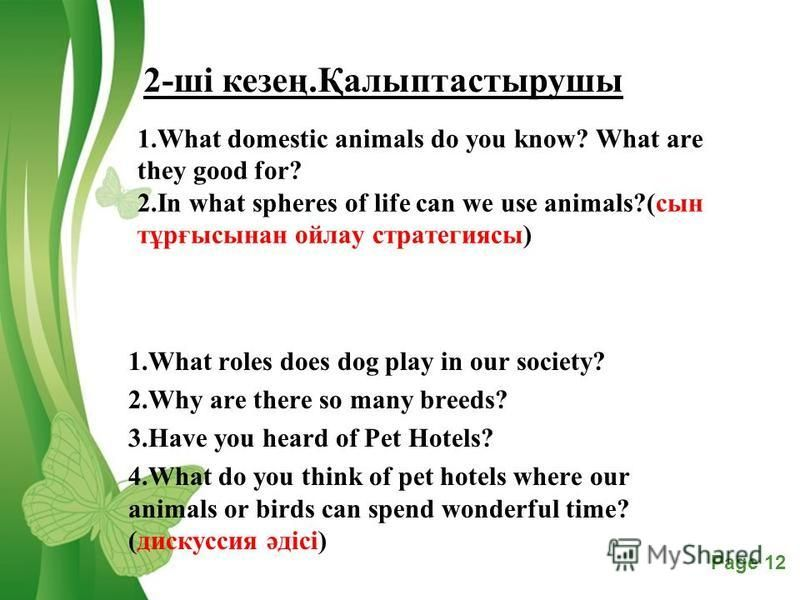 Free Powerpoint TemplatesPage 12 1.What domestic animals do you know? What are they good for? 2.In what spheres of life can we use animals?(сын тұрғысынан ойлау стратегиясы) 1.What roles does dog play in our society? 2.Why are there so many breeds? 3
