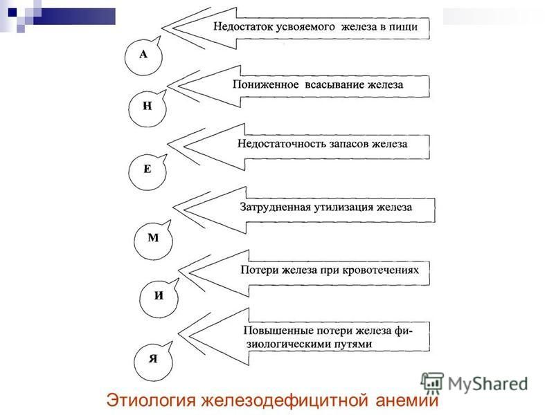 Этиология железодефицитной анемии