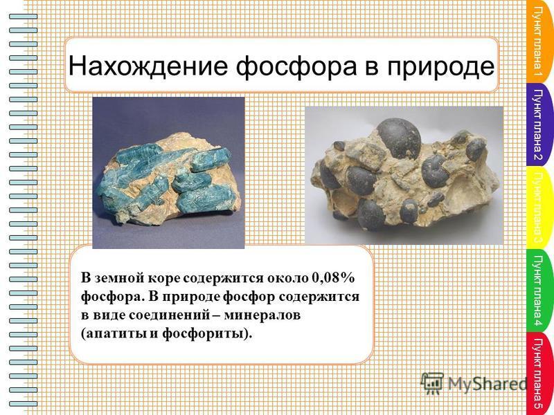 Пункт плана 1 Пункт плана 2 Пункт плана 3 Пункт плана 4 Пункт плана 5 Нахождение фосфора в природе В земной коре содержится около 0,08% фосфора. В природе фосфор содержится в виде соединений – минералов (апатиты и фосфориты).