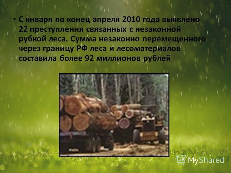 С января по конец апреля 2010 года выявлено 22 преступления связанных с незаконной рубкой леса. Сумма незаконно перемещенного через границу РФ леса и лесоматериалов составила более 92 миллионов рублей 7