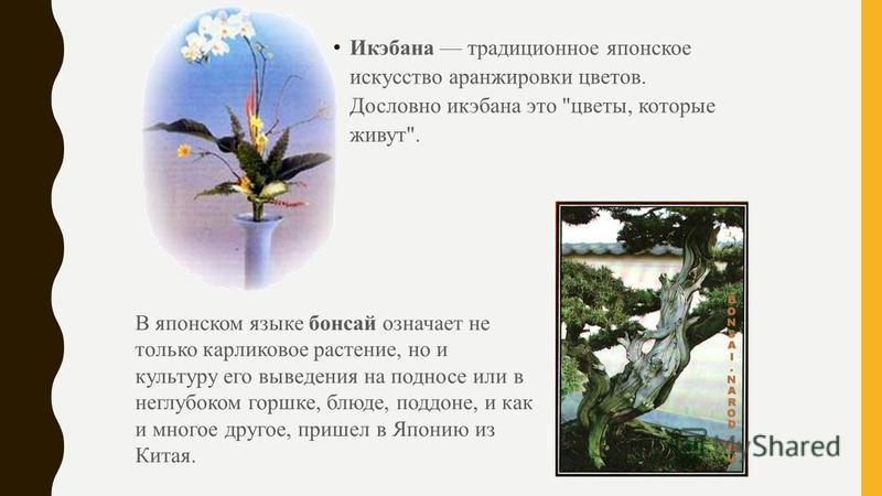 Икэбана традиционное японское искусство аранжировки цветов. Дословно икебана это