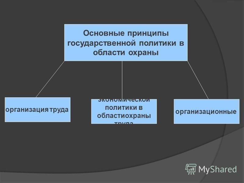 Основные принципы государственной политики в области охраны организация труда экономической политики в области охраны труда организационные