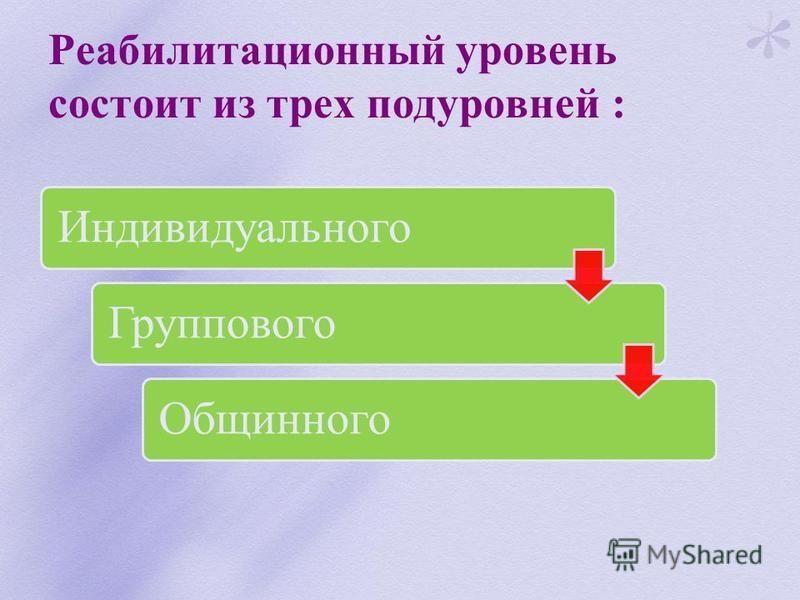 Реабилитационный уровень состоит из трех подуровней : Индивидуального ГрупповогоОбщинного