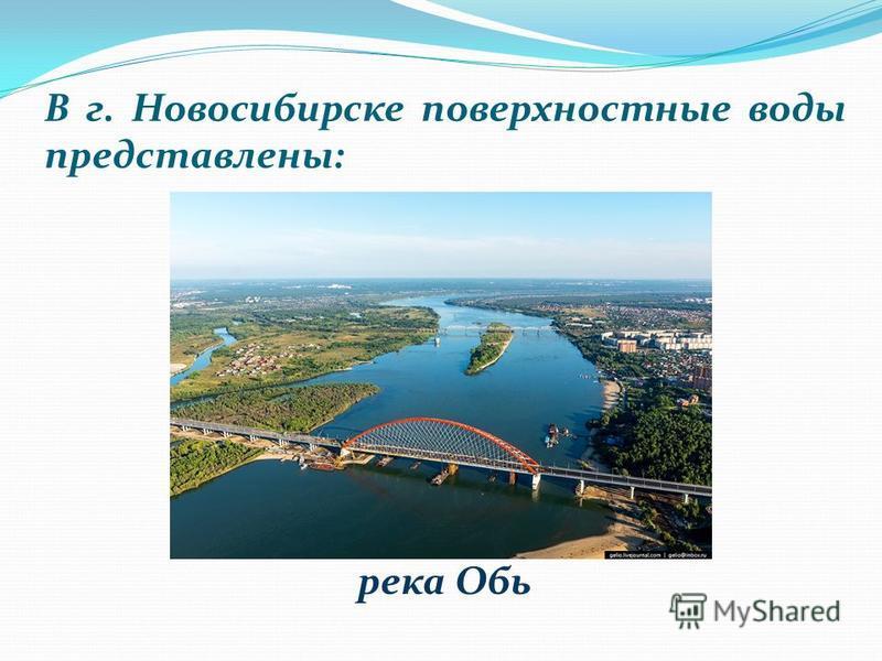 В г. Новосибирске поверхностные воды представлены: река Обь