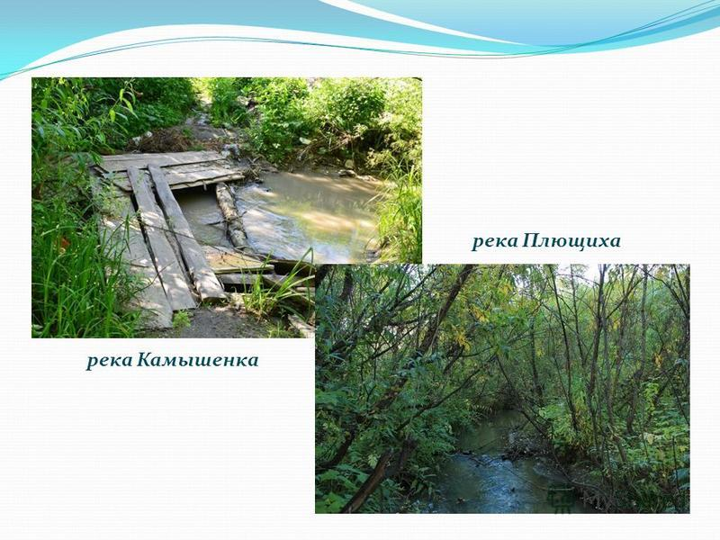 река Камышенка река Плющиха