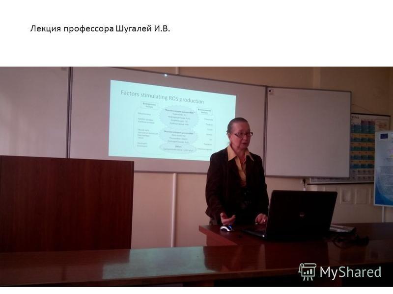 Лекция профессора Шугалей И.В.