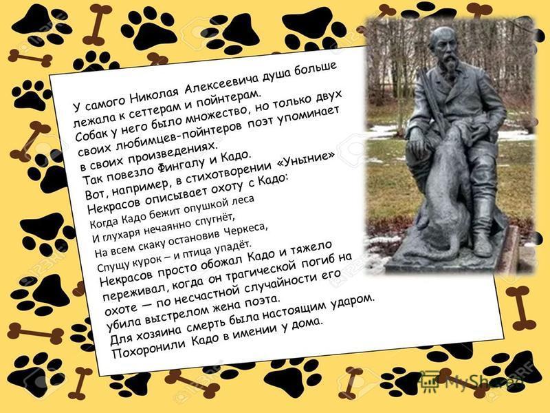 У самого Николая Алексеевича душа больше лежала к сеттерам и пойнтерам. Собак у него было множество, но только двух своих любимцев-пойнтеров поэт упоминает в своих произведениях. Так повезло Фингалу и Кадо. Вот, например, в стихотворении «Уныние» Нек
