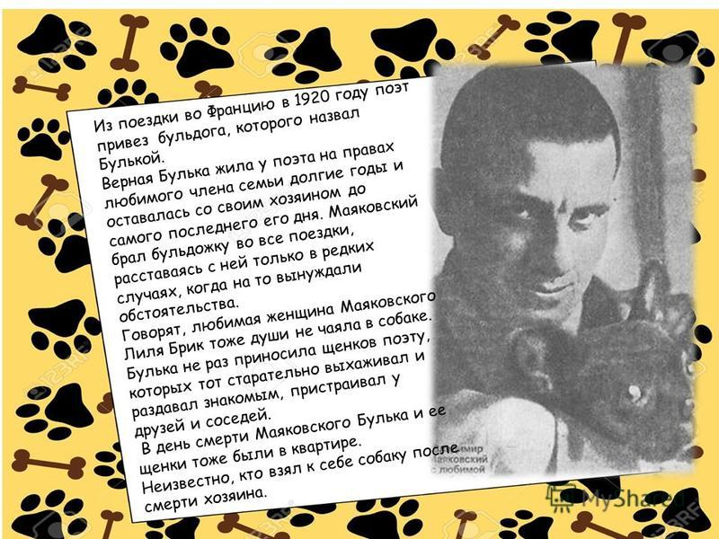 Из поездки во Францию в 1920 году поэт привез бульдога, которого назвал Булькой. Верная Булька жила у поэта на правах любимого члена семьи долгие годы и оставалась со своим хозяином до самого последнего его дня. Маяковский брал бульдожку во все поезд