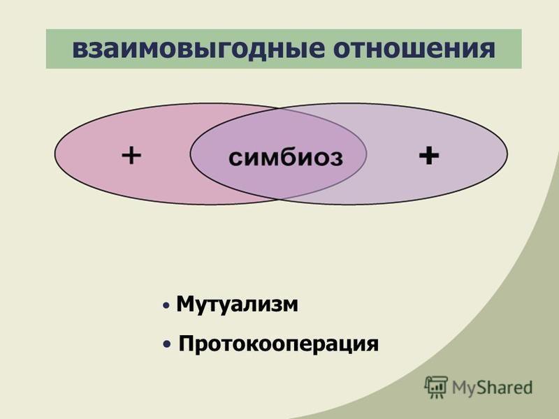 взаимовыгодные отношения Мутуализм Протокооперация