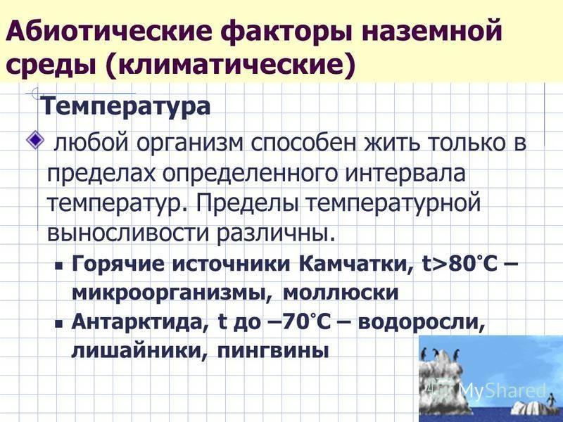 Абиотические факторы наземной среды (климатические) Температура любой организм способен жить только в пределах определенного интервала температур. Пределы температурной выносливости различны. Горячие источники Камчатки, t>80°C – микроорганизмы, моллю