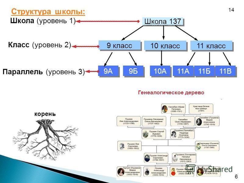 6 Структура школы: корень Школа (уровень 1) Класс (уровень 2) Параллель (уровень 3) 9А 9 класс 11 класс Школа 137 10 класс 9Б 10А 11А 11Б 11В Генеалогическое дерево 14