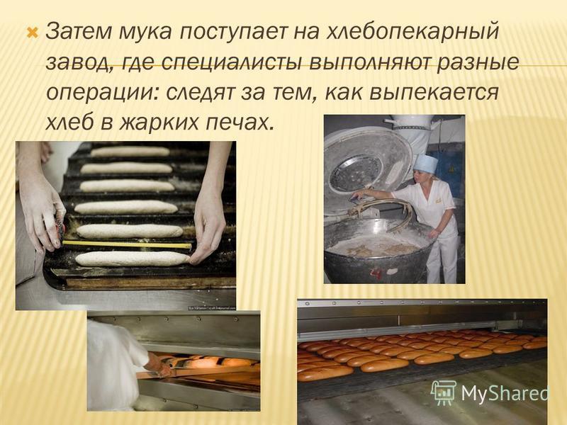 Затем мука поступает на хлебопекарный завод, где специалисты выполняют разные операции: следят за тем, как выпекается хлеб в жарких печах.