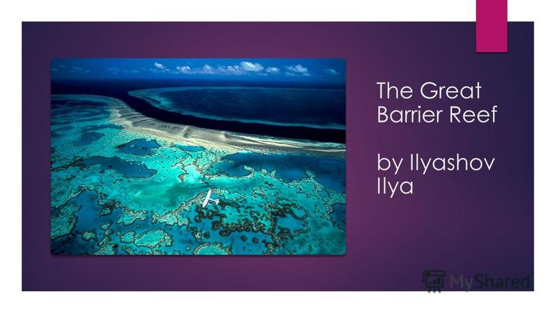 The Great Barrier Reef by Ilyashov Ilya