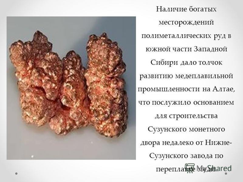 Наличие богатых месторождений полиметаллических руд в южной части Западной Сибири дало толчок развитию медеплавильной промышленности на Алтае, что послужило основанием для строительства Сузунского монетного двора недалеко от Нижне- Сузунского завода