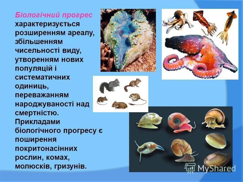 Біологічний прогрес характеризується розширенням ареалу, збільшенням чисельності виду, утворенням нових популяцій і систематичних одиниць, переважанням народжуваності над смертністю. Прикладами біологічного прогресу є поширення покритонасінних рослин