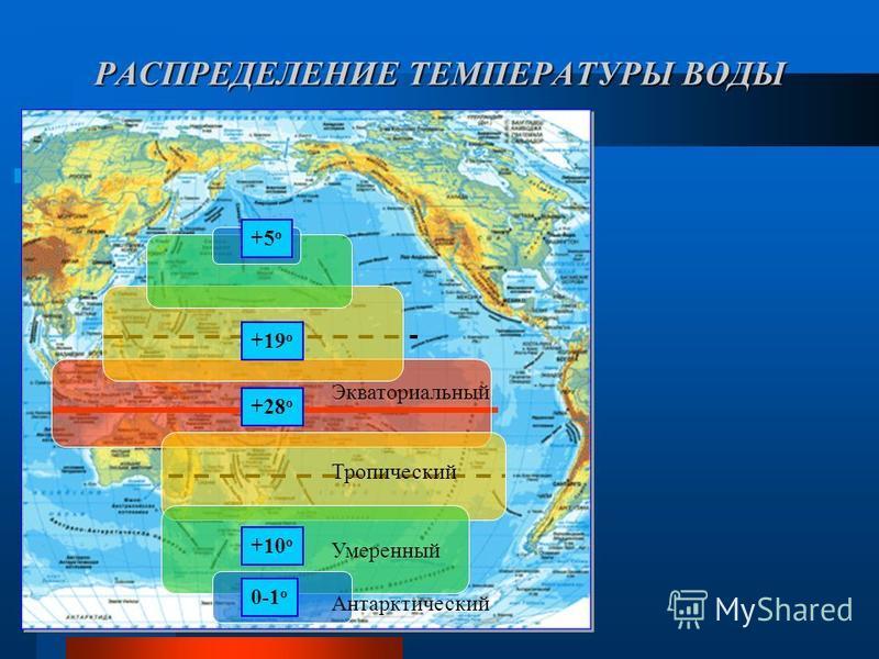 РАСПРЕДЕЛЕНИЕ ТЕМПЕРАТУРЫ ВОДЫ Экваториальный Тропический Умеренный Антарктический +19 о +5 о +10 о 0-1 о +28 о