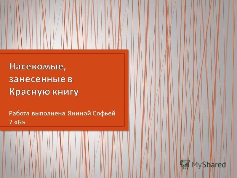 Работа выполнена Яниной Софьей 7 « Б »