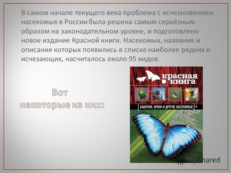В самом начале текущего века проблема с исчезновением насекомых в России была решена самым серьёзным образом на законодательном уровне, и подготовлено новое издание Красной книги. Насекомых, названия и описания которых появились в списке наиболее ред